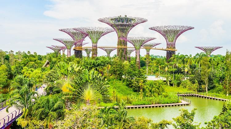 شهر سبز سنگاپور