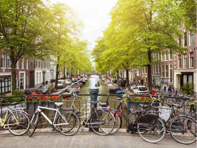 طبیعت زیبای آمستردام
