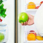 رژیم غذایی در بارداری – خوردن چه غذاهایی در دوران بارداری برای مادر و فرزند مفید است ؟