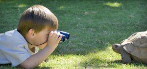 تقویت حس کنجکاوی کودک